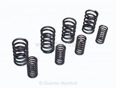 Set of valve springs R/126